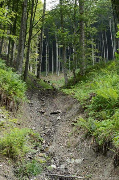 Gefahr der Bodenerosion